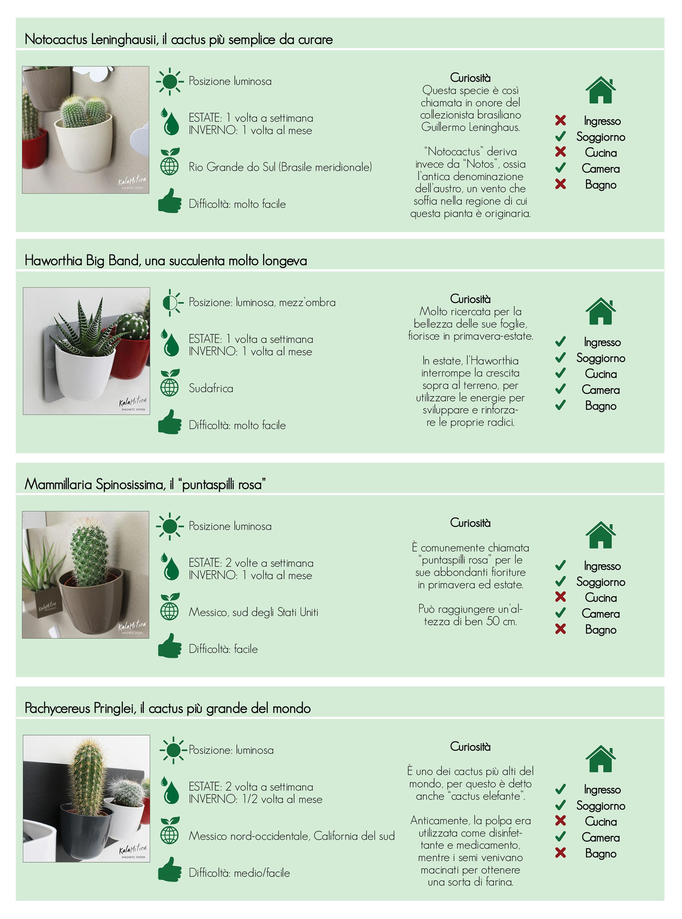 tabella completa per la cura e il manteimento delle piante grasse