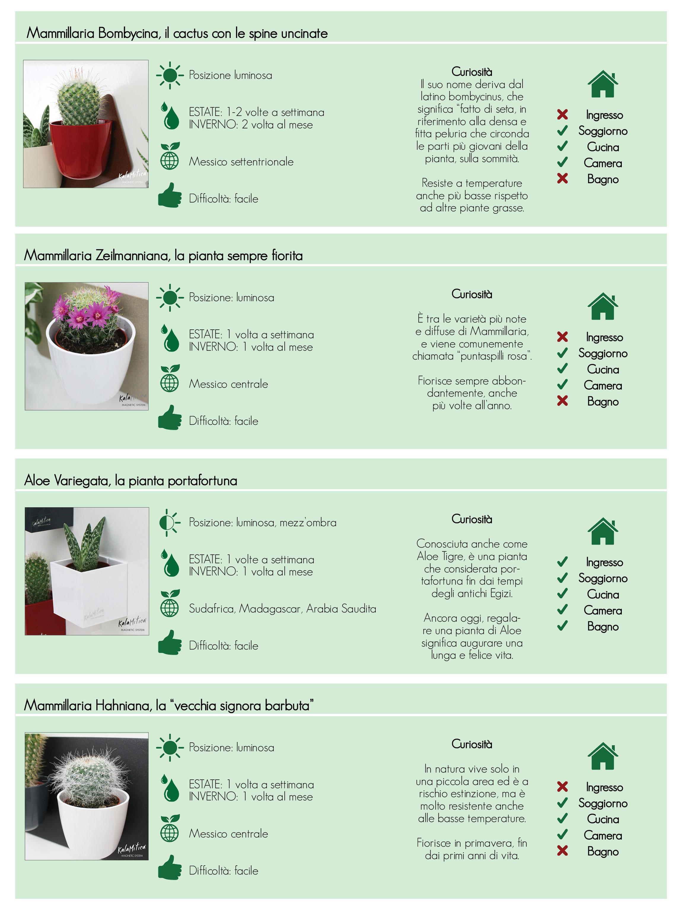 tabella completa per la cura e il mantenimento delle piante grasse